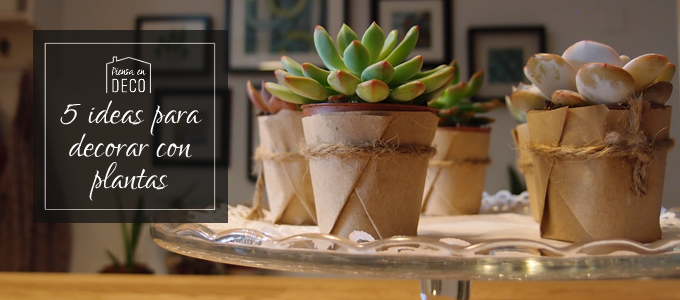 5 ideas para decorar con plantas