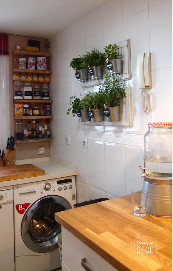 hierbas frescas en tu cocina